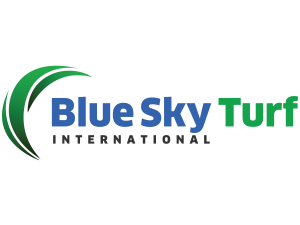 Blue Sky International Inc