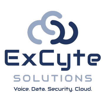 ExCyte Solutions  LLC