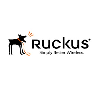 Ruckus Wireless Inc